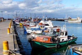 Fishing boats at Kalk Bay habour, Cape Town